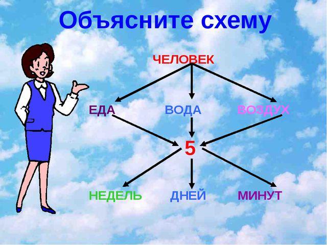 Объясните схему ЧЕЛОВЕК ЕДА ВОДА ВОЗДУХ 5 НЕДЕЛЬ ДНЕЙ МИНУТ