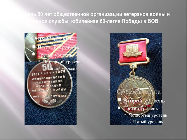 Медаль 50 лет общественной организации ветеранов войны и военной службы, юбил...