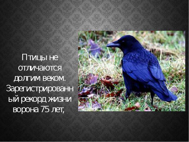 Птицы не отличаются долгим веком. Зарегистрированный рекорд жизни ворона 75...