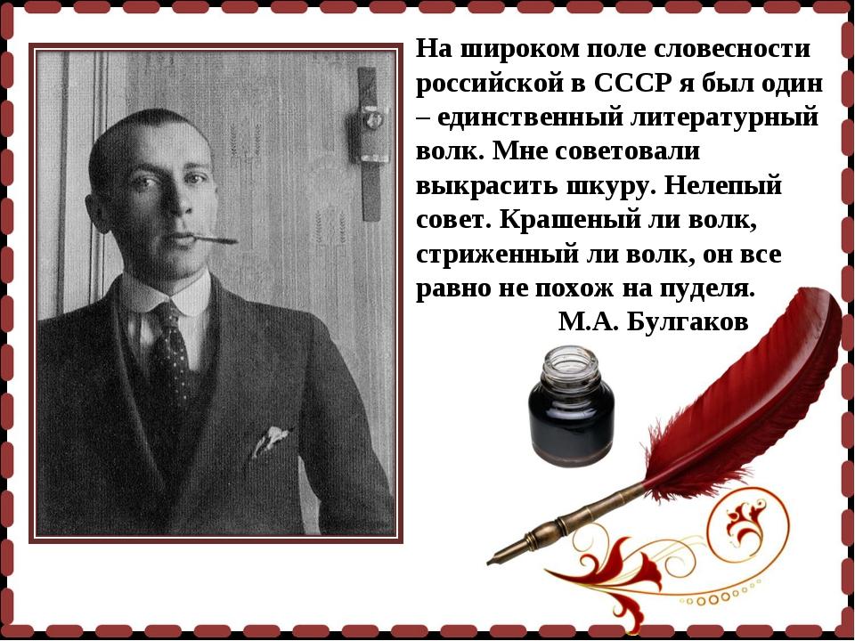 На широком поле словесности российской в СССР я был один – единственный литер...
