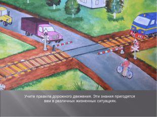 Учите правила дорожного движения. Эти знания пригодятся вам в различных жизне