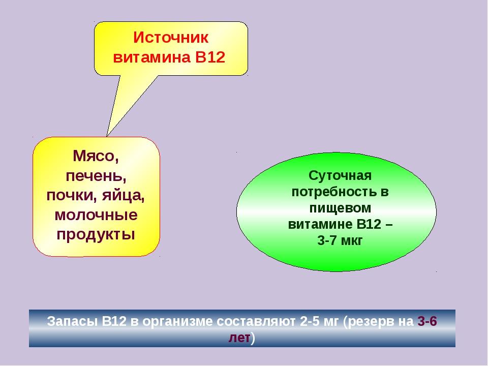 Источник витамина В12 Мясо, печень, почки, яйца, молочные продукты Запасы В12...