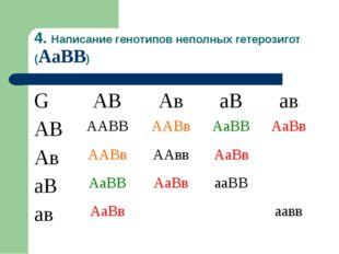 4. Написание генотипов неполных гетерозигот (АаВВ) GАВАваВав АВААВВААВв