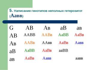 5. Написание генотипов неполных гетерозигот (Аавв) GАВАваВав АВААВВААВв