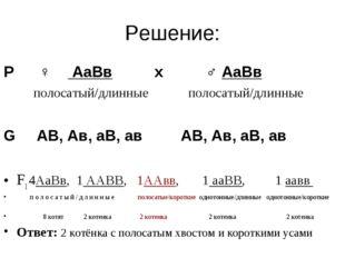 Решение: Р ♀ АаВв х ♂ АаВв полосатый/длинные полосатый/длинные G АВ, Ав, аВ,