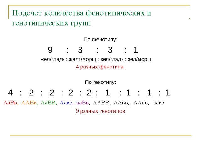 Подсчет количества фенотипических и генотипических групп По фенотипу: 9 : 3 :...