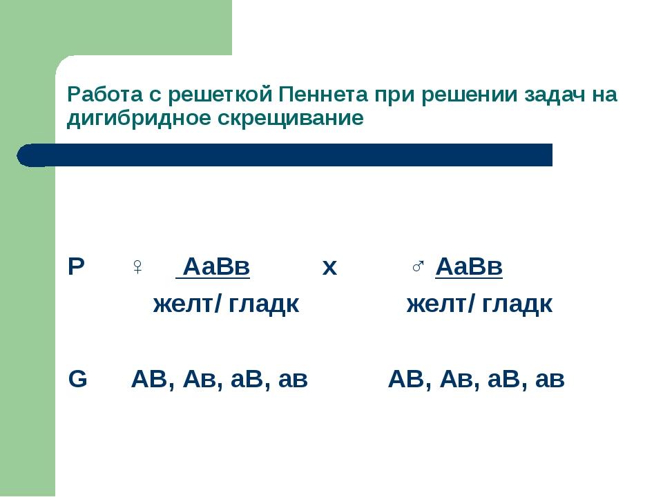 Работа с решеткой Пеннета при решении задач на дигибридное скрещивание Р ♀ Аа...