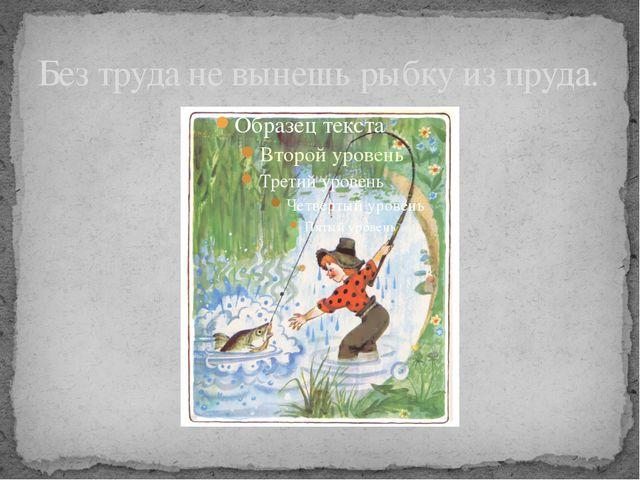 Без труда не вынешь рыбку из пруда.