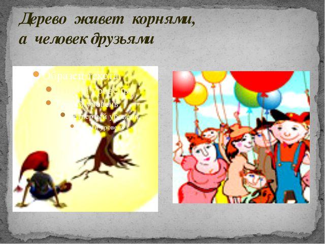 Дерево живет корнями, а человек друзьями
