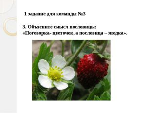 3. Объясните смысл пословицы: «Поговорка- цветочек, а пословица – ягодка».