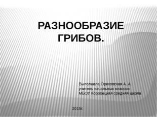 РАЗНООБРАЗИЕ ГРИБОВ. Выполнила Ореховская А. А. учитель начальных классов МБО