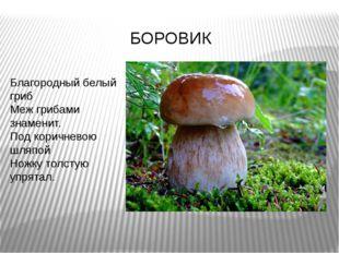 Благородный белый гриб Меж грибами знаменит. Под коричневою шляпой Ножку толс