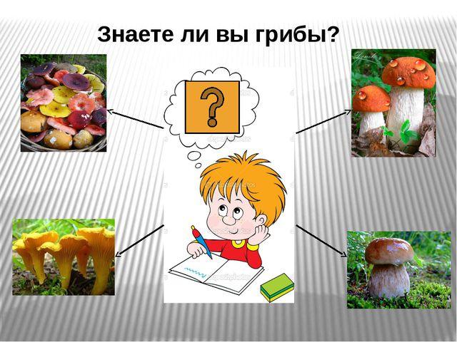 Знаете ли вы грибы?