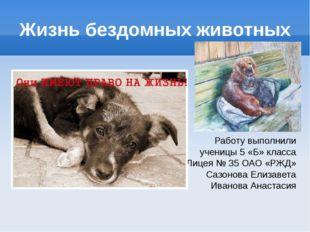 Жизнь бездомных животных Работу выполнили ученицы 5 «Б» класса Лицея № 35 ОАО