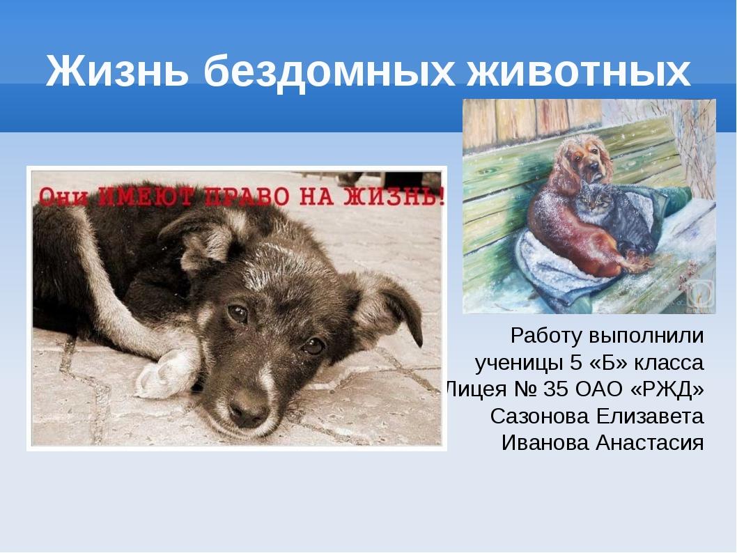 Жизнь бездомных животных Работу выполнили ученицы 5 «Б» класса Лицея № 35 ОАО...