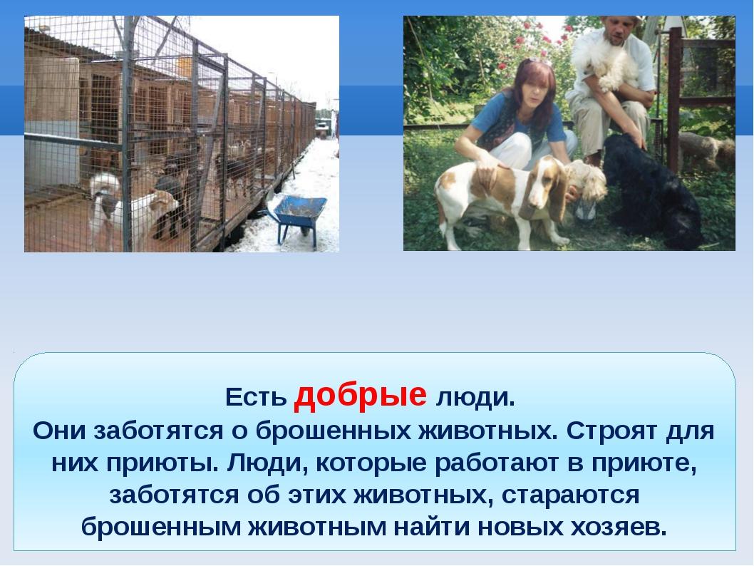 Есть добрые люди. Они заботятся о брошенных животных. Строят для них приюты....