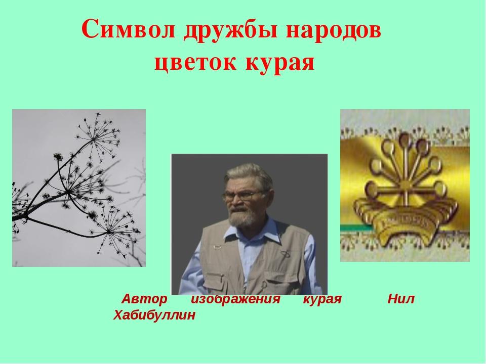 Символ дружбы народов цветок курая Автор изображения курая Нил Хабибуллин