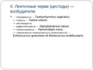 II. Ленточные черви (цестоды) — возбудители: — тениаринхоза — Taeniarhynchus