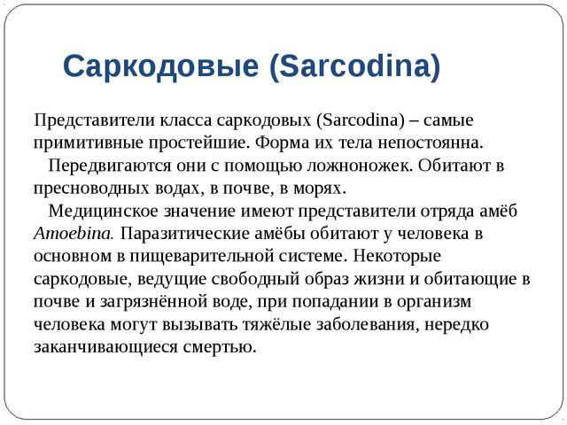 Саркодовые (Sarcodina) Представители класса саркодовых (Sarcodina) – самые пр...