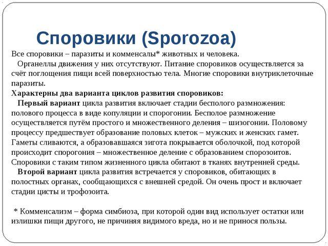 Споровики (Sporozoa) Все споровики – паразиты и комменсалы* животных и челове...