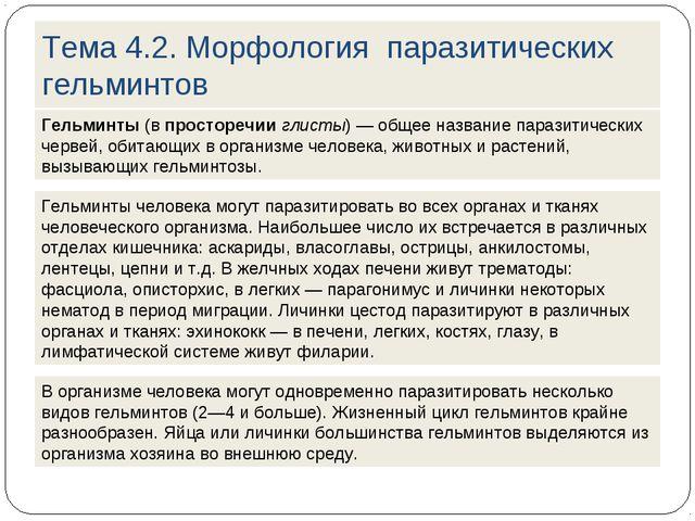 Тема 4.2. Морфология паразитических гельминтов Гельминты (в просторечии глист...