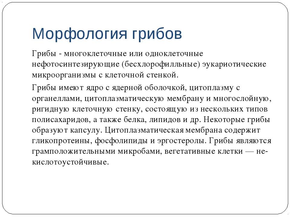 Морфология грибов Грибы - многоклеточные или одноклеточные нефотосинтезирующи...