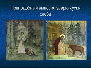 Преподобный выносил зверю куски хлеба