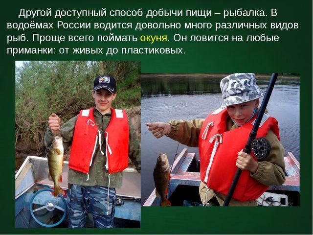 Другой доступный способ добычи пищи – рыбалка. В водоёмах России водится дов...
