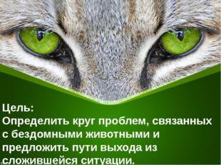 Цель: Определить круг проблем, связанных с бездомными животными и предложить