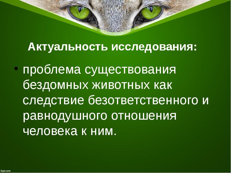 Актуальность исследования:  проблема существования бездомных животных как сл...