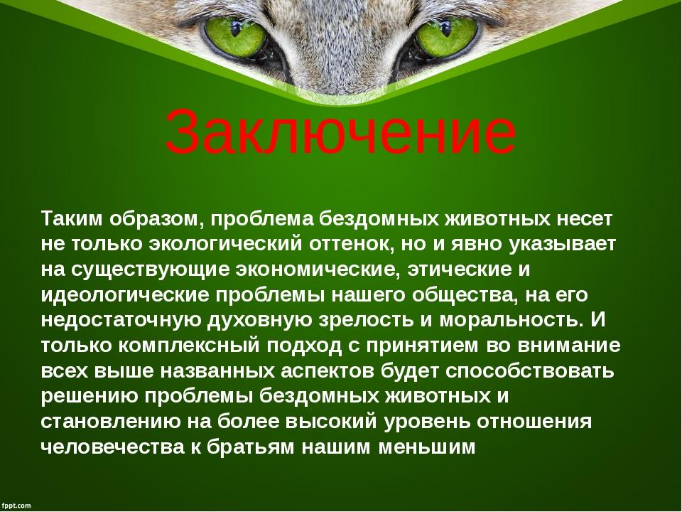 Заключение Таким образом, проблема бездомных животных несет не только экологи...
