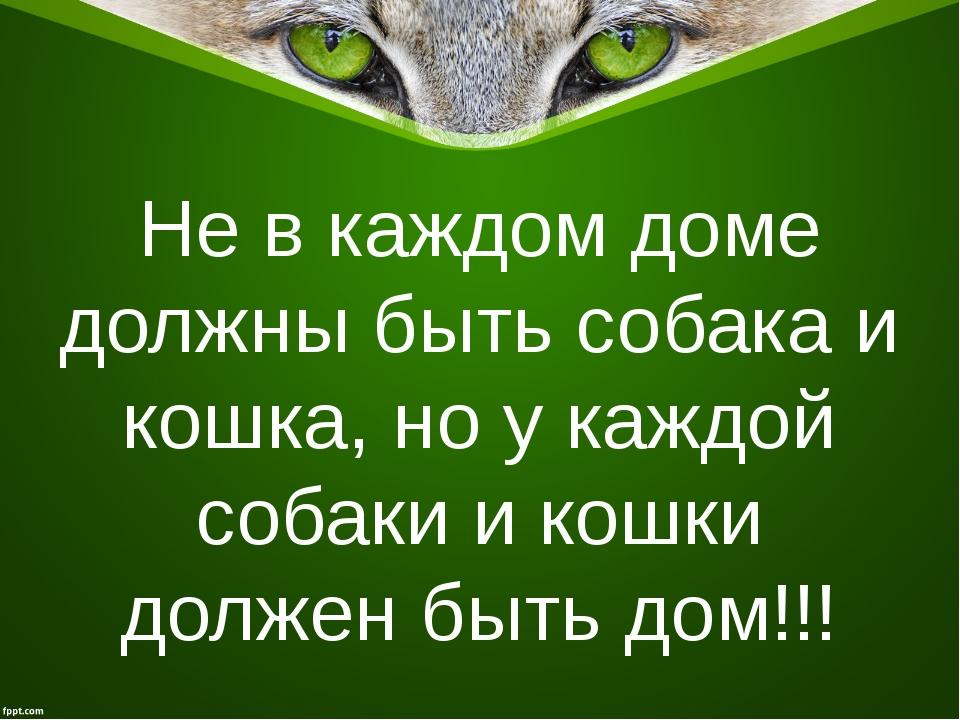 Не в каждом доме должны быть собака и кошка, но у каждой собаки и кошки долже...