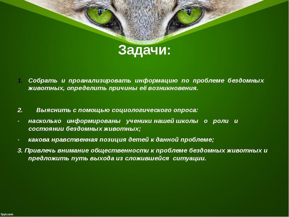 Задачи: Собрать и проанализировать информацию по проблеме бездомных животных,...