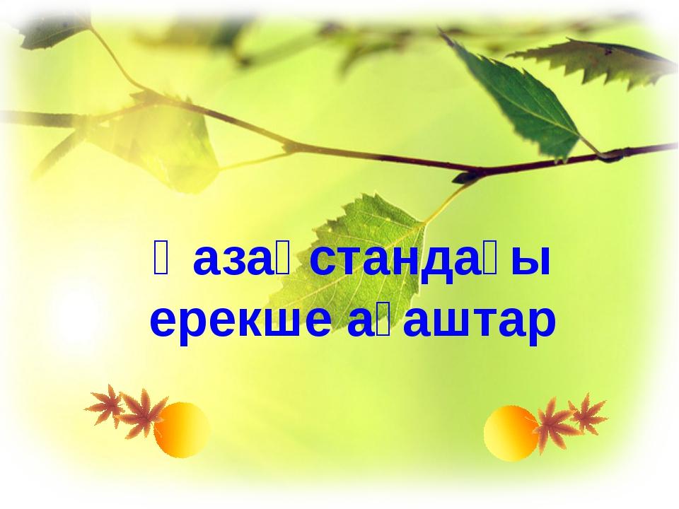 Қазақстандағы ерекше ағаштар www.ZHARAR.com
