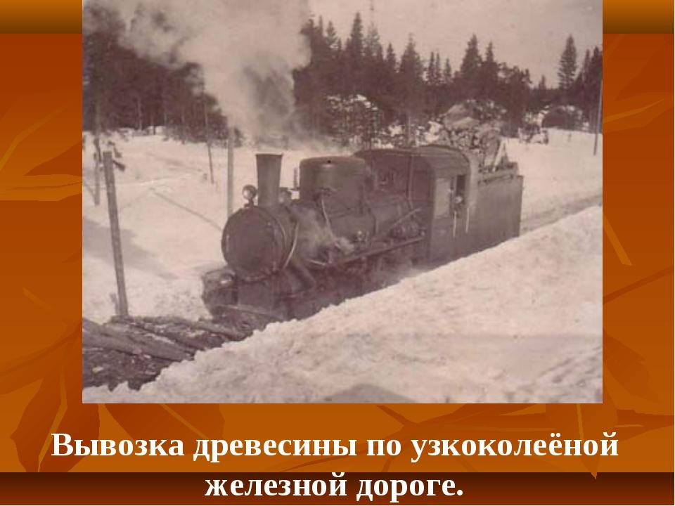 Вывозка древесины по узкоколеёной железной дороге.