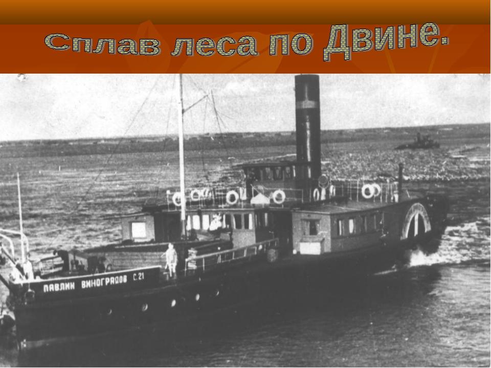 История развития лесозаготовок в Виноградовском районе.