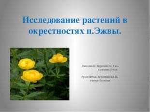 Исследование растений в окрестностях п.Эжвы.  Выполнили: Журавлева А., 8 кл.