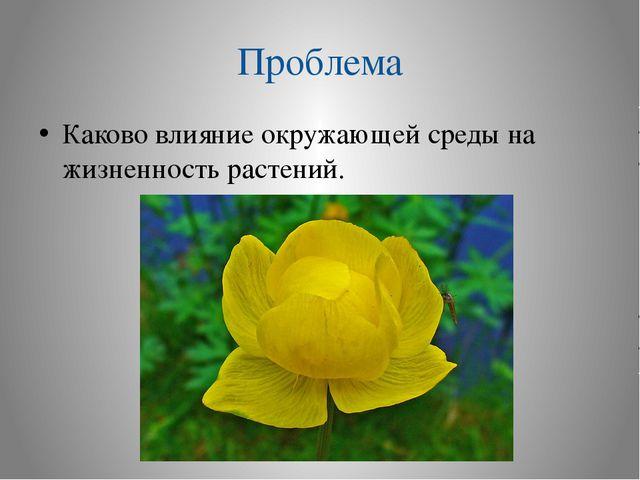 Проблема Каково влияние окружающей среды на жизненность растений.