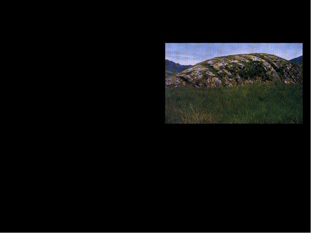 По происхождению равнины бывают: Ледниковые (моренные) – сложены несортирован...