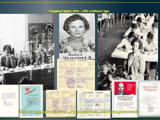 Трудовые будни 1968 – 1984 учебные годы
