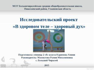 МОУ Большечирклейская средняя общеобразовательная школа, Николаевский район,