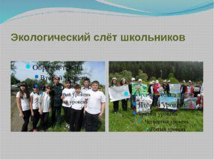 Экологический слёт школьников