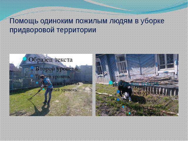 Помощь одиноким пожилым людям в уборке придворовой территории