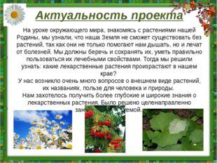 Актуальность проекта На уроке окружающего мира, знакомясь с растениями нашей