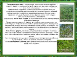 Лекарственные растения—группа растений,части которых являются сырьём для п
