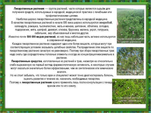 Лекарственные растения—группа растений,части которых являются сырьём для п...