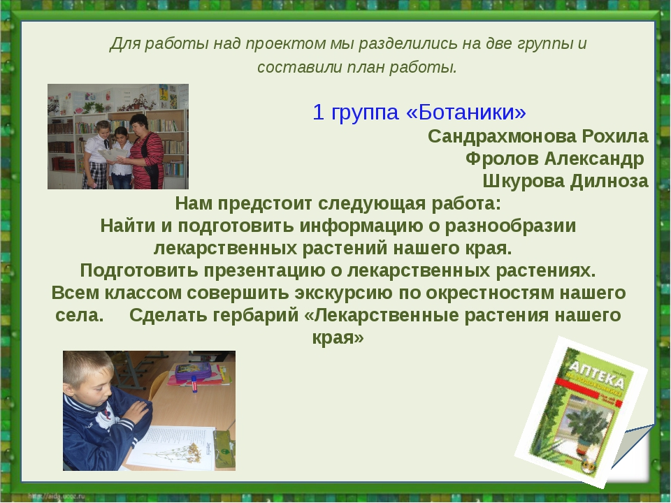 1 группа «Ботаники» Сандрахмонова Рохила Фролов Александр Шкурова Дилноза На...