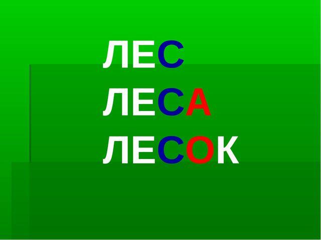 ЛЕС ЛЕСА ЛЕСОК