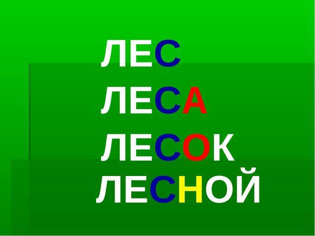 ЛЕС ЛЕСА ЛЕСОК ЛЕСНОЙ