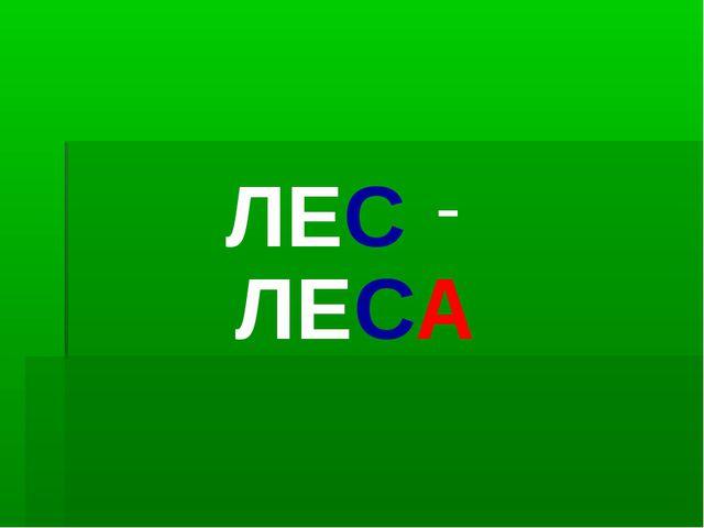 ЛЕС - ЛЕСА